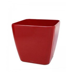 The soft edges of the Lechuza Quadro planter make this the perfect combination between a round and a square planter! The Lechuza Quadro is suitable for both indoors and outdoors and comes in several colours and sizes: - 28x28x26 cm